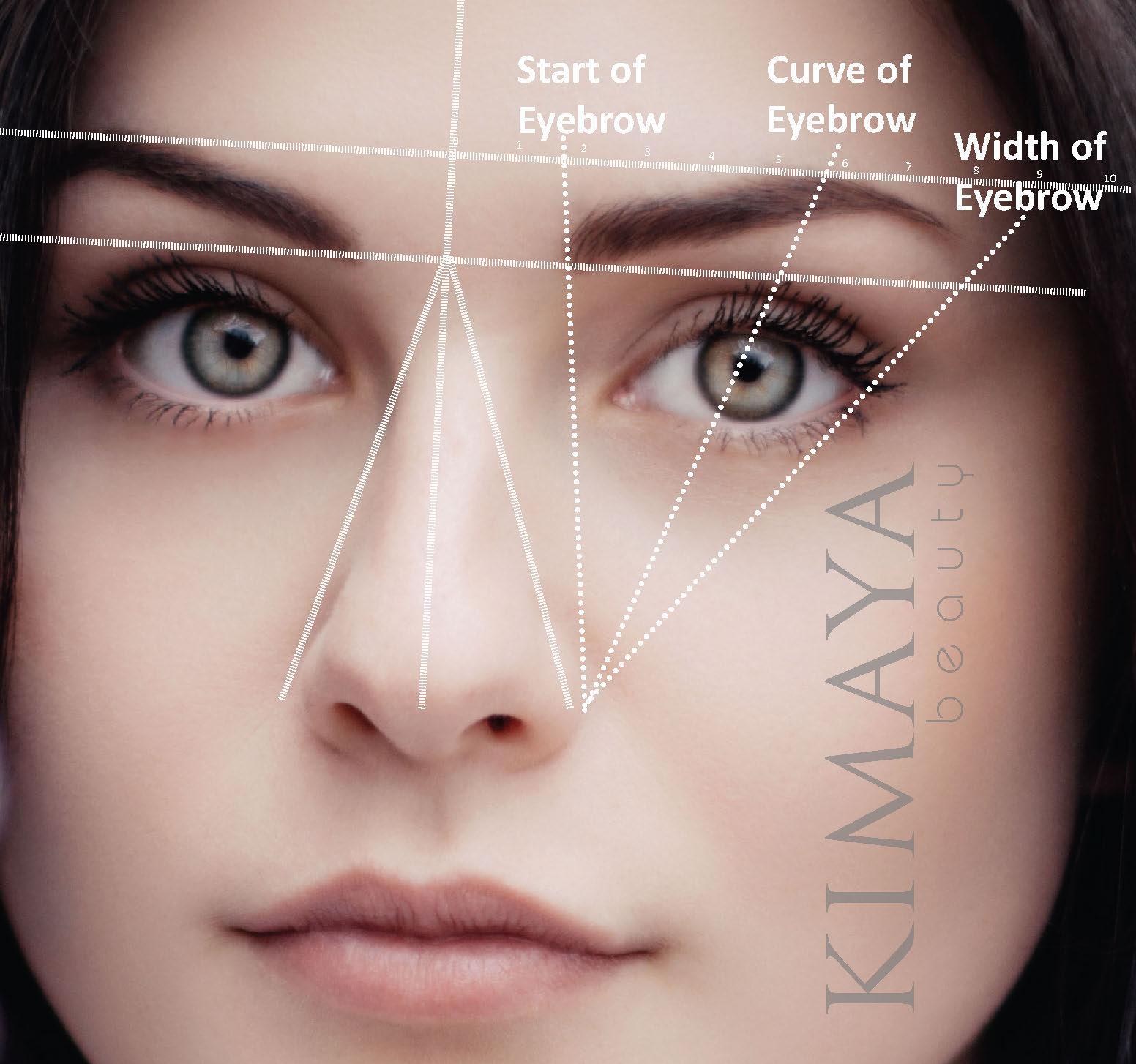 eyebrow science